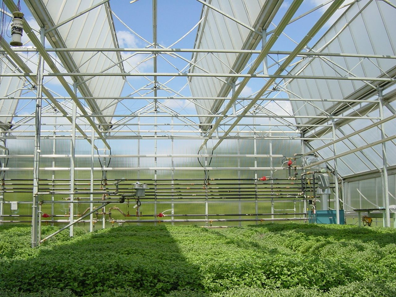 Awesome Open Roof Greenhouse Home Remodeling Inspirations Genioncuboardxyz